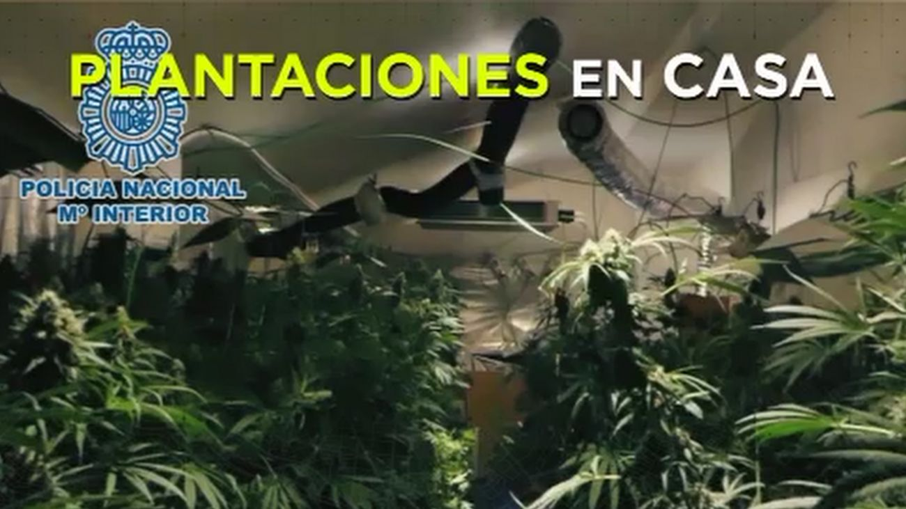 Madrid Directo 14.03.2019