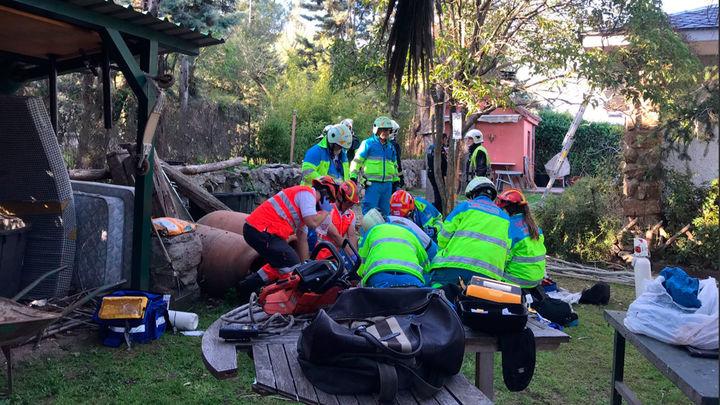 Un hombre muere electrocutado al podar un árbol en Colmenar Viejo