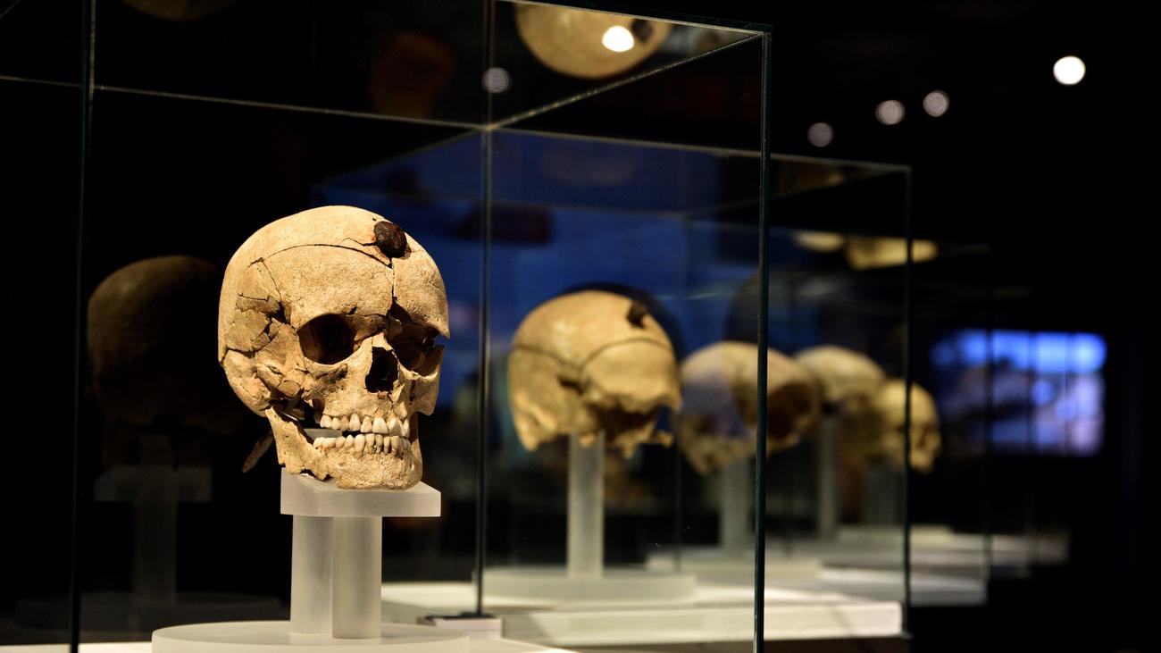 Prehistóricos trofeos de guerra de la cultura ibérica en el Arqueológico