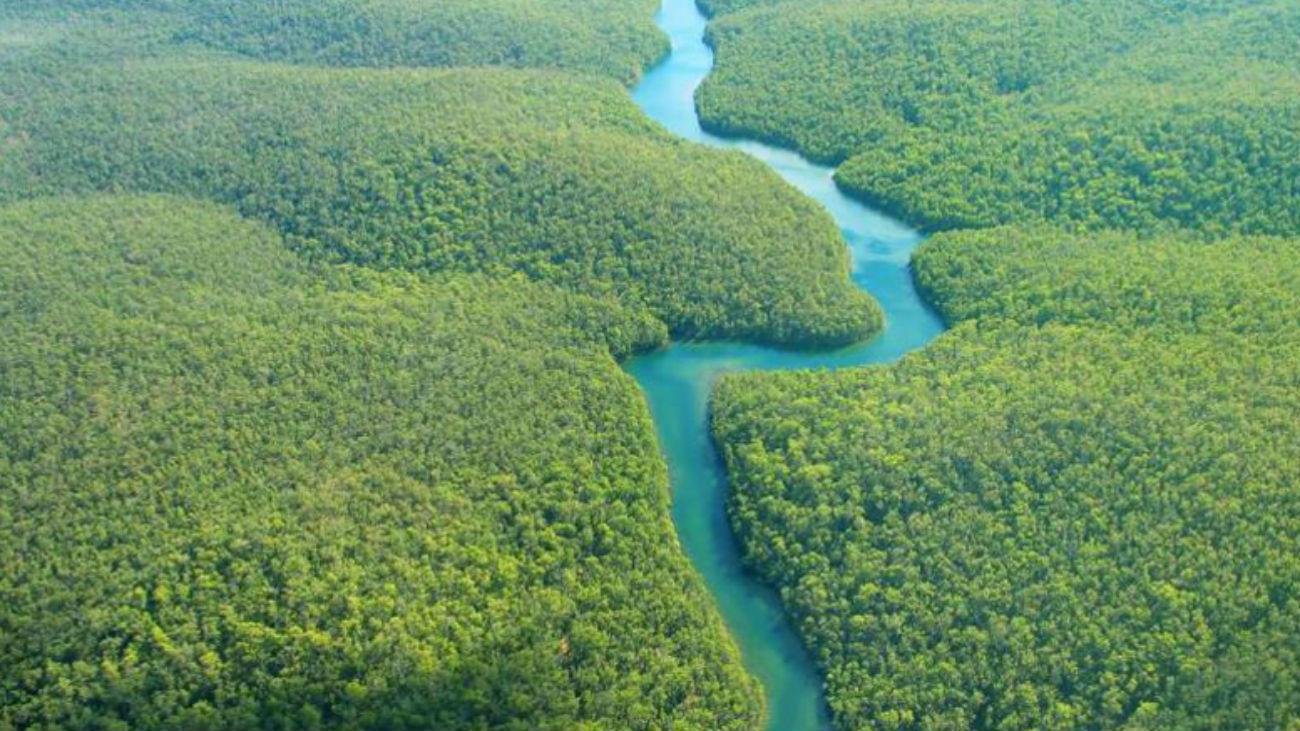 El bosque amazónico de época precolonial no era tan virgen
