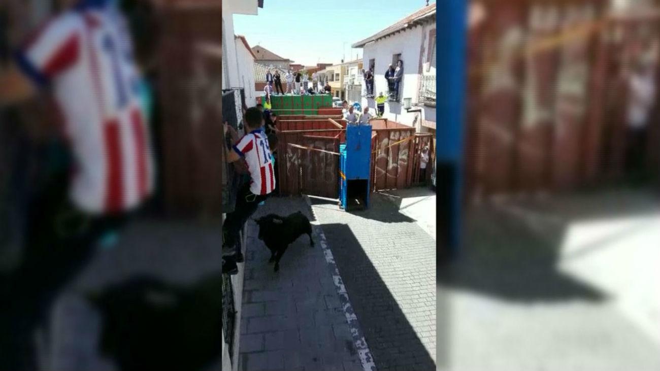 Un toro se escapa y deja tres heridos en San Martín de la Vega