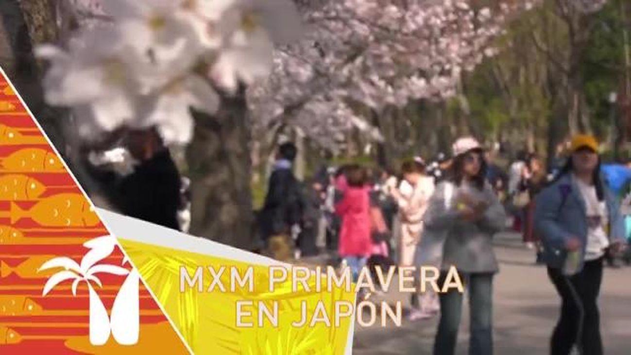 Madrileños por el mundo: Japón