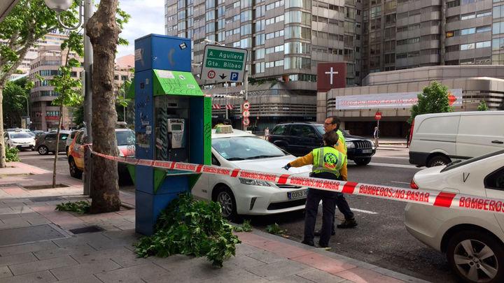 Un taxista herido grave al caerle una rama de un árbol en la calle Princesa