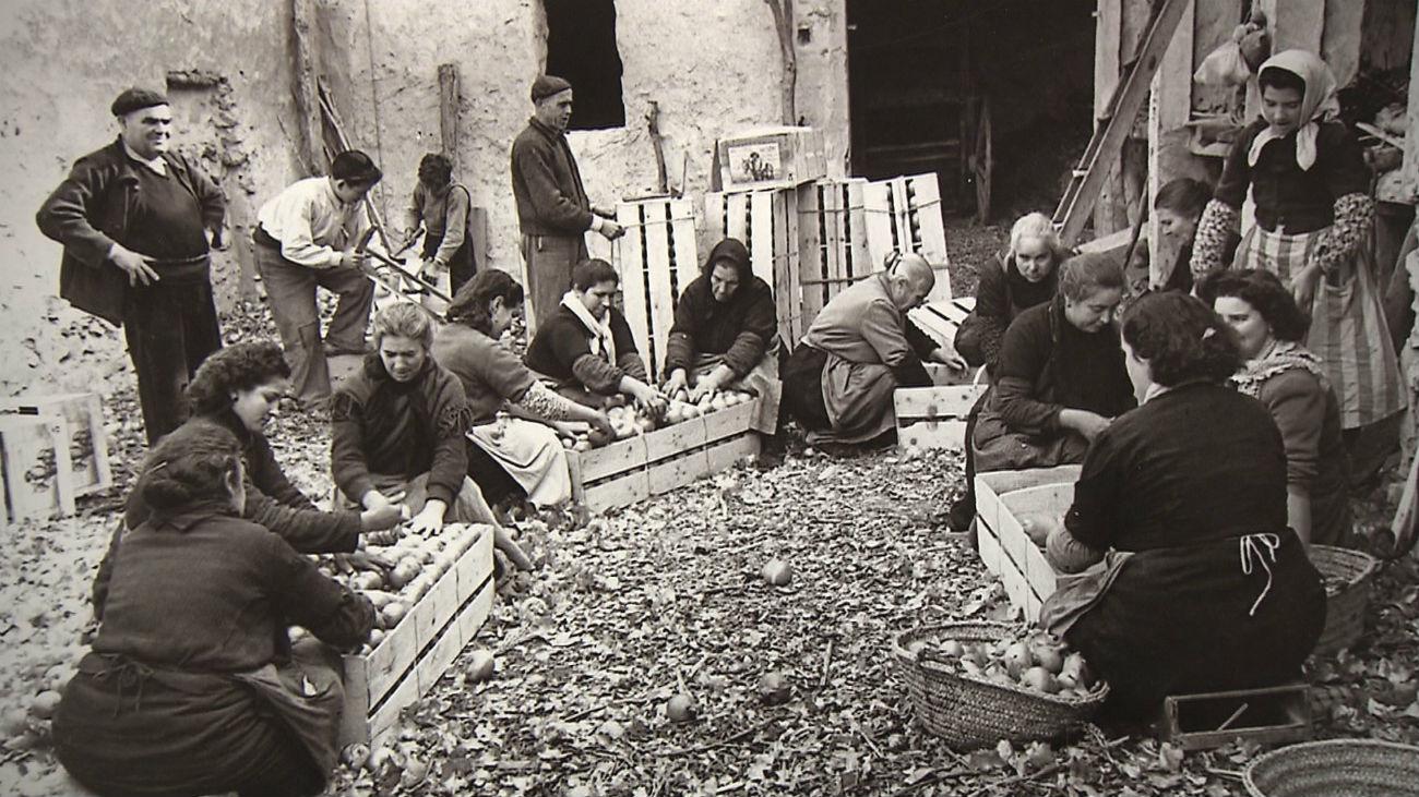 'Cultivando memorias',  mujeres pioneras en el campo español