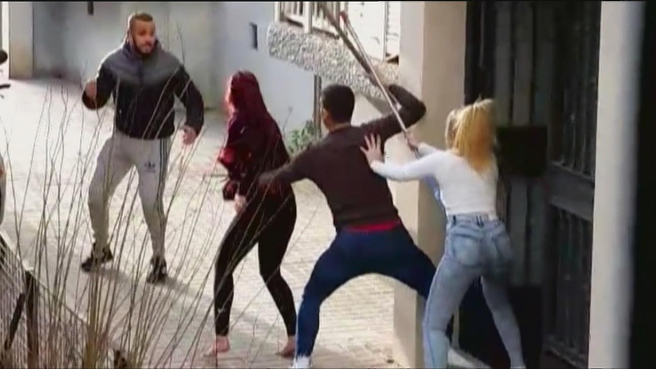 Detenido en Sevilla un okupa que acumulaba perros de raza peligrosa en un trastero