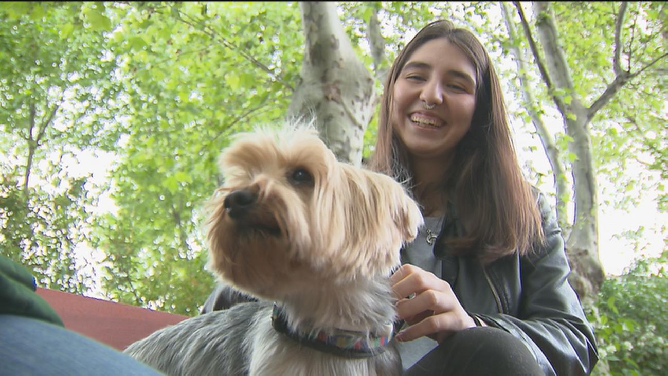 El Hospital de Guadarrama permite la visita de las mascotas de los pacientes
