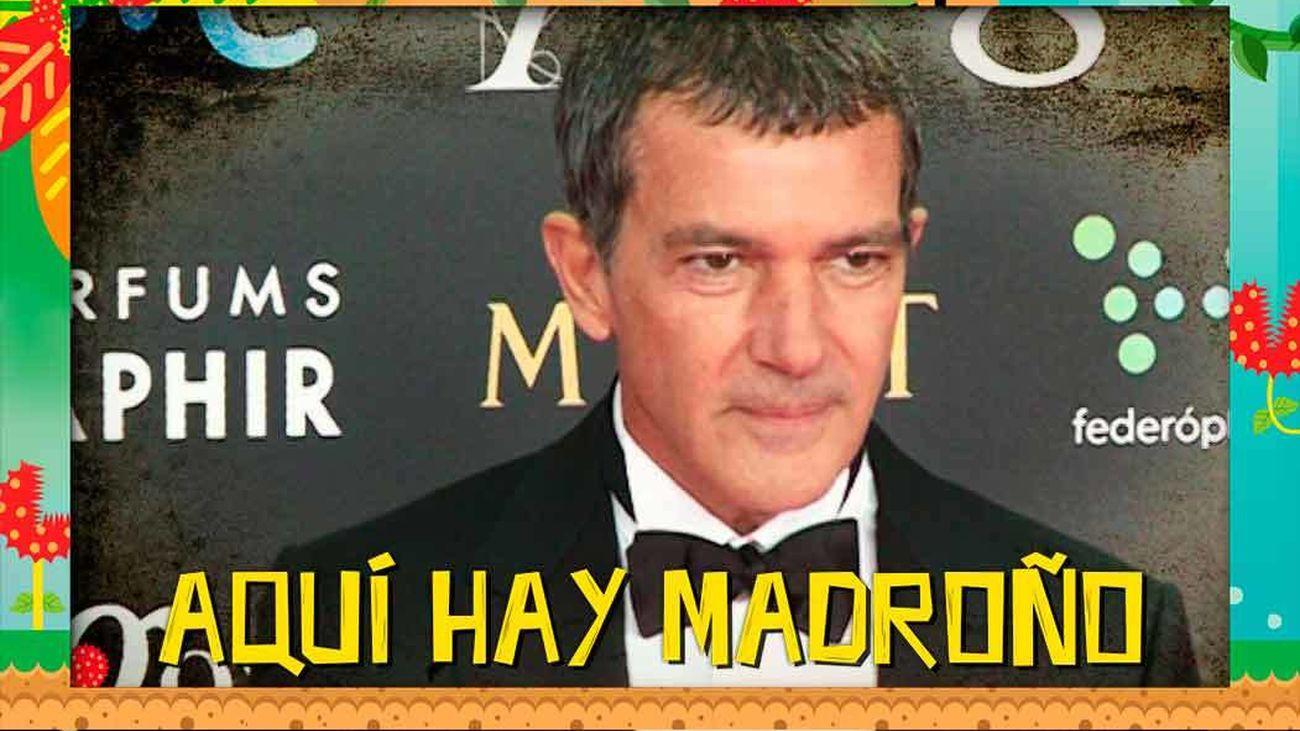 Te desvelamos la inmensa fortuna que amasa Antonio Banderas