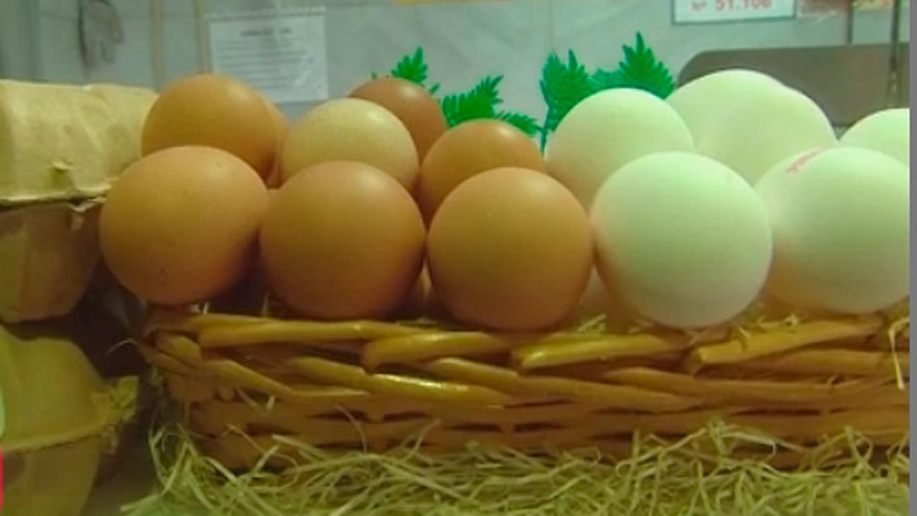 Cómo conservar bien los huevos en casa
