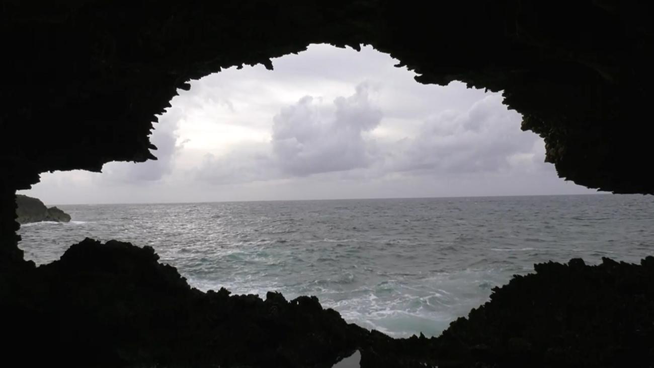 La Animal Flower Cave, donde el Atlántico de junta con el Caribe