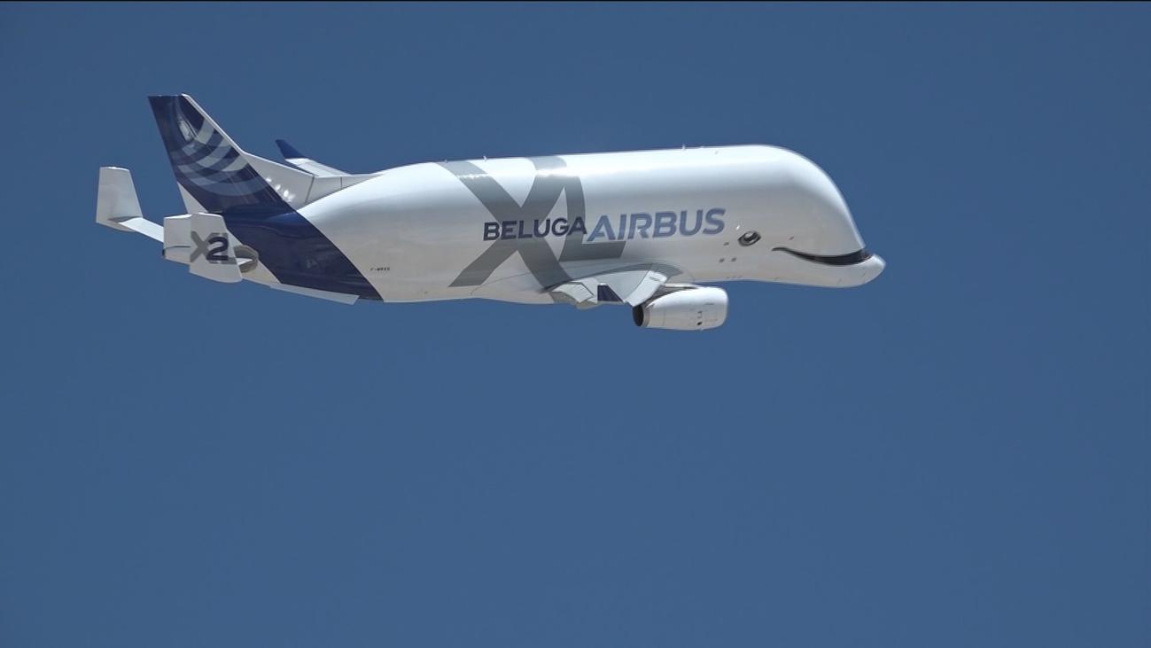 Así es el nuevo Airbus Beluga XL