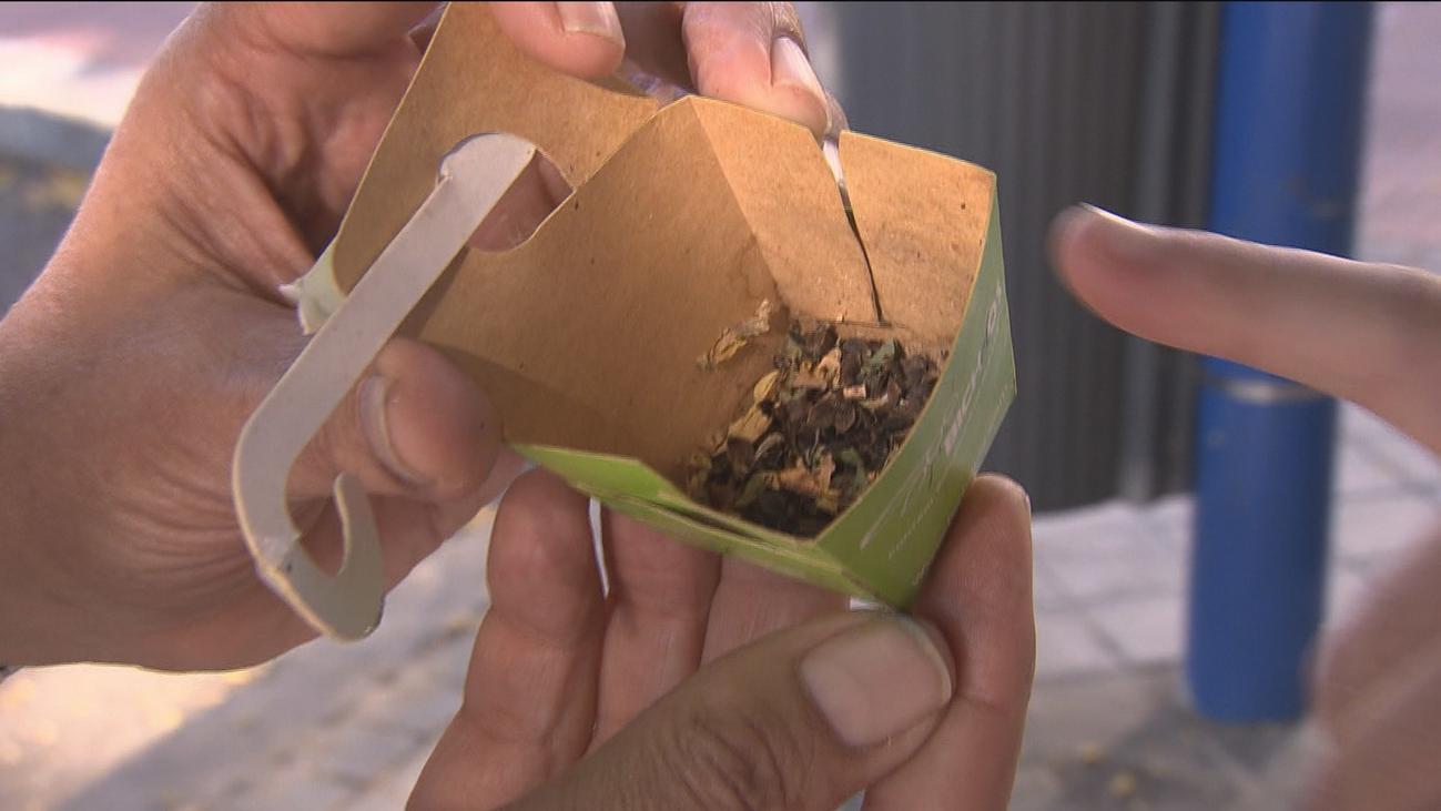 Leganés lucha contra las plagas de pulgones y cochinilla