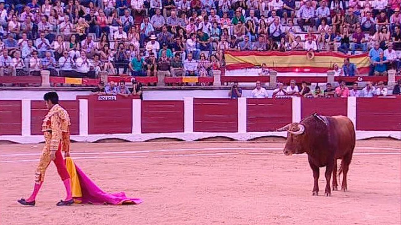 Toros desde Cáceres - 2ª parte