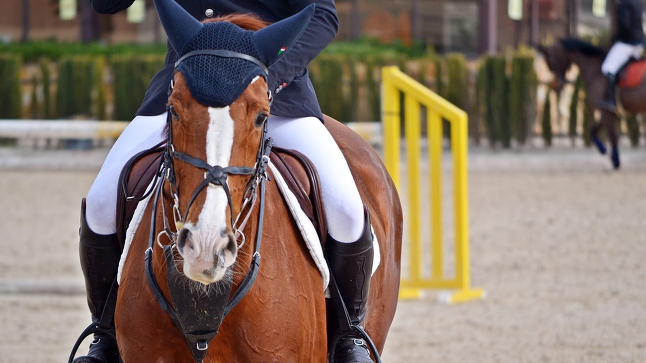 ¿Montar a caballo mejora tu salud?