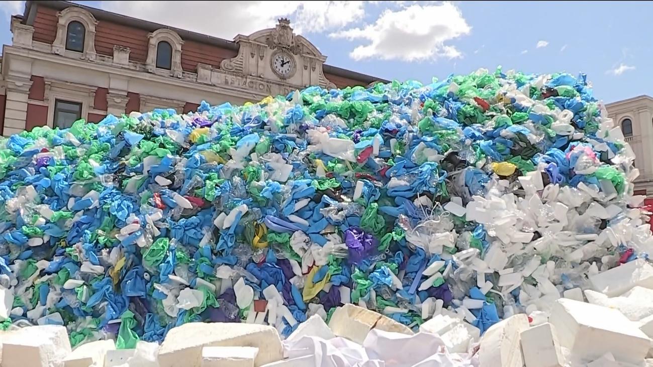 Así se ha celebrado el Día Mundial del Medio Ambiente
