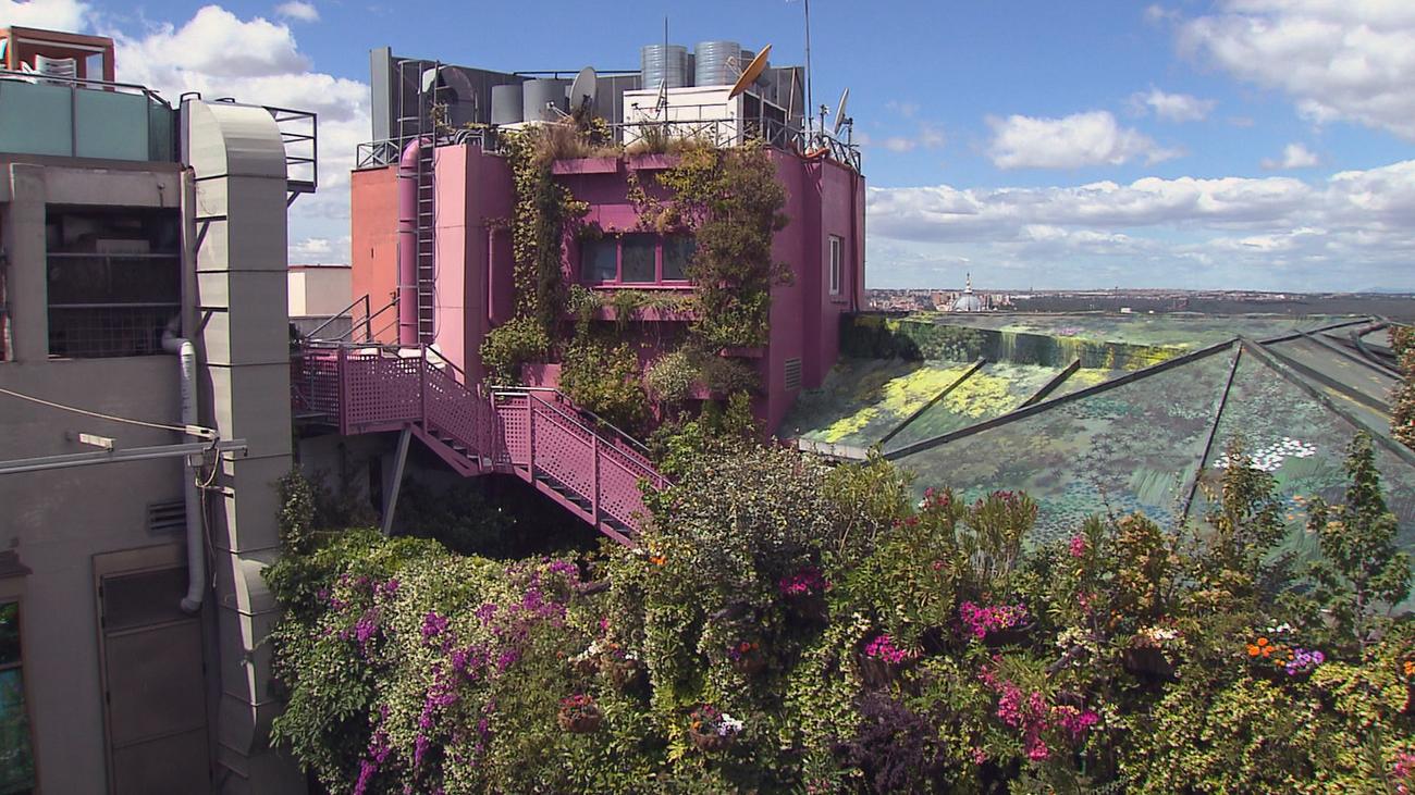 Los jardines verticales, más pulmones para Madrid