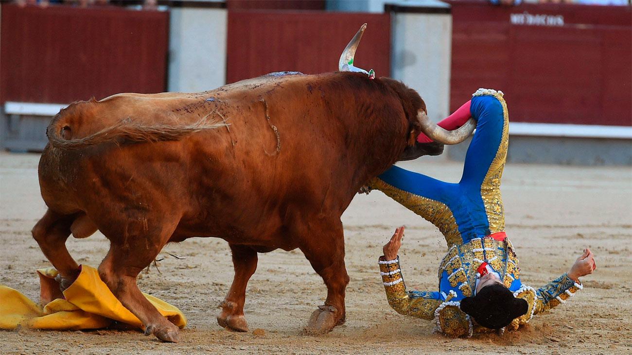 Sebastián Ritter, herido por el cuarto toro en Las Ventas