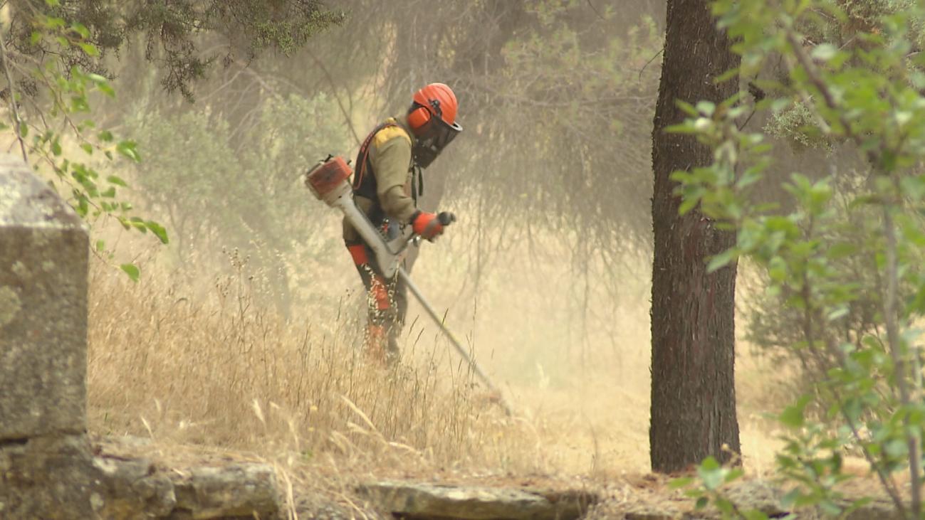 Los ayuntamientos de la región, en plena campaña de desbroce para evitar incendios