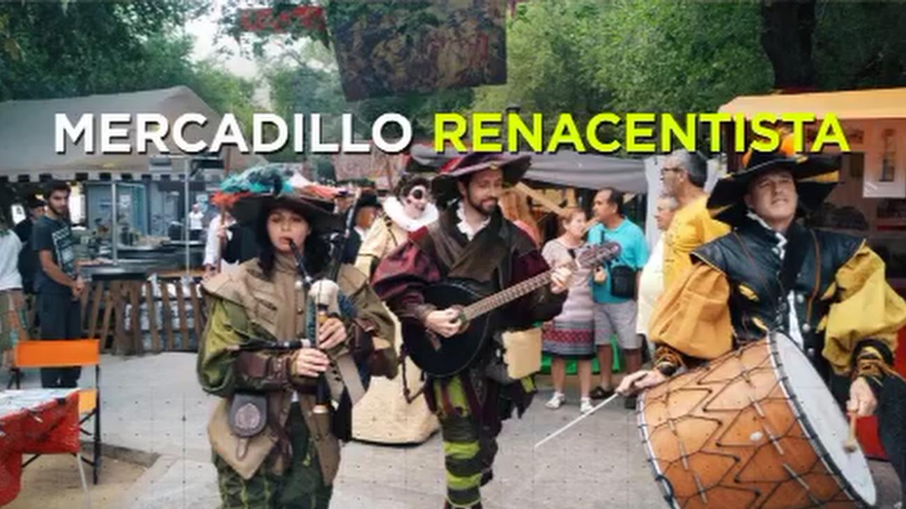 Mercadillo Renacentista en Pinto