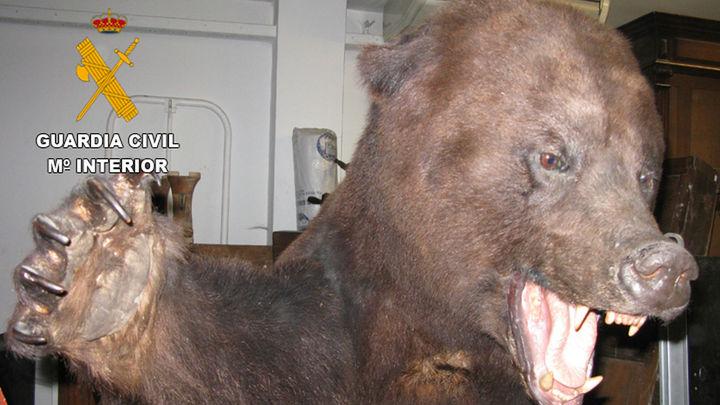 Gran operación de la Guardia Civil contra el tráfico furtivo de animales