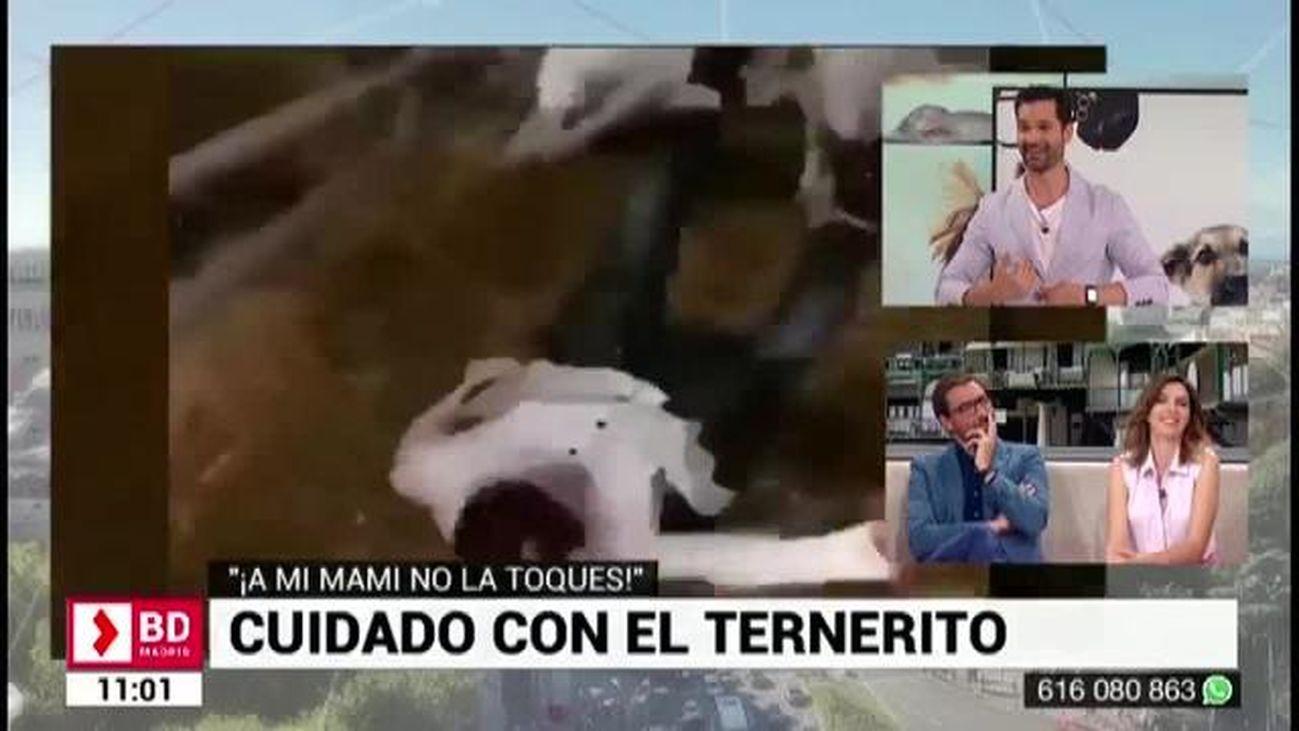 Buenos Días Madrid 12.07.2019