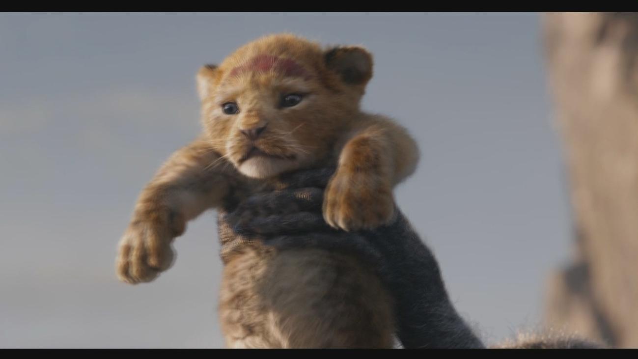 'El Rey León' y 'Utoya' llegan a la gran pantalla