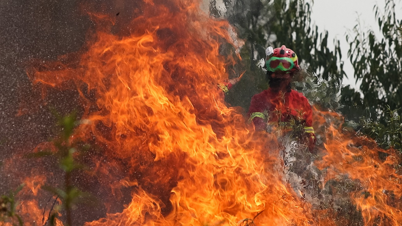 Los bomberos controlan el 85% del gran incendio de Portugal