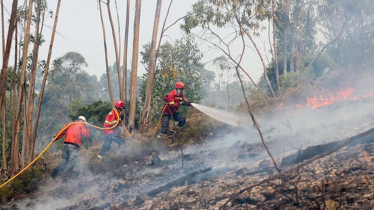 Más de 3.000 hectáreas quemadas en el incendio de Portugal