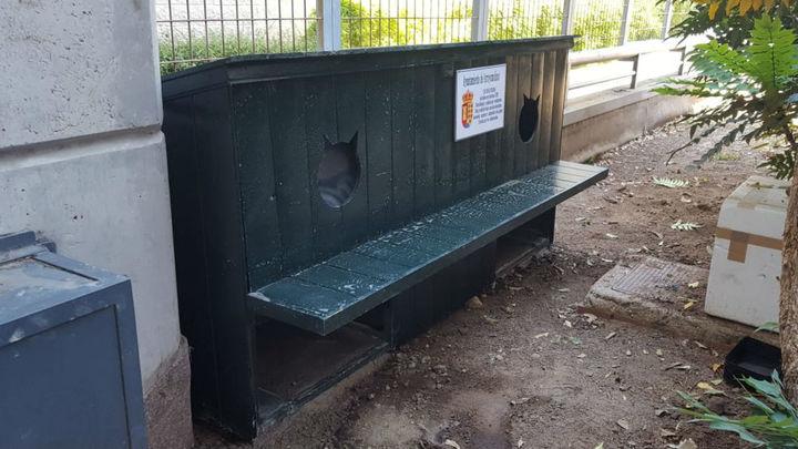 Arroyomolinos instala un proyecto pionero de casetas para las colonias de gatos