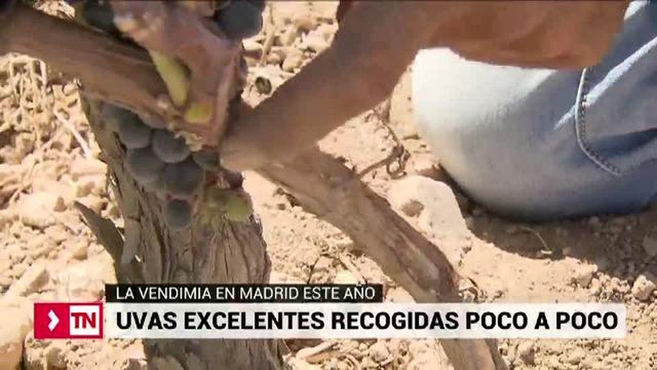 Telenoticias Fin de Semana 18.08.2019