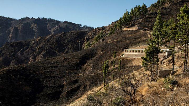 La mitad de los evacuados por el fuego de Gran Canaria ya están en casa