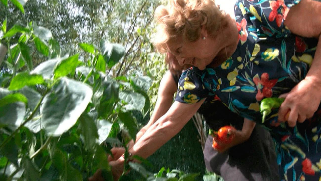 Cipriana a sus 74, una gran emprendedora