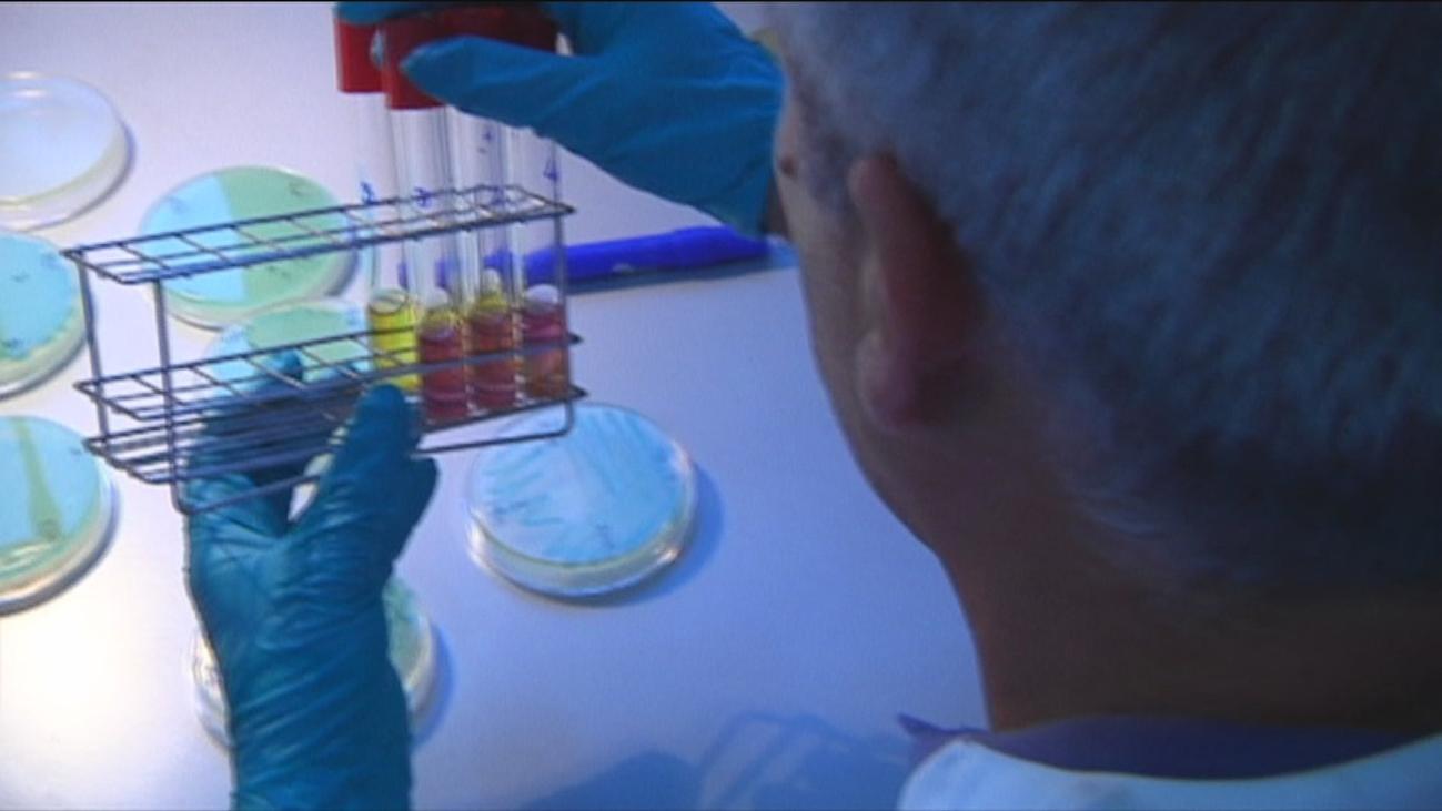 España en alerta por listeriosis