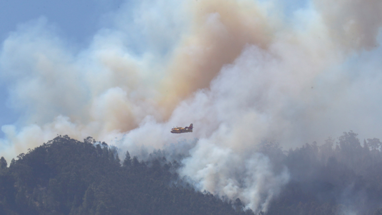 El incendio de Gran Canaria se estabilizará en las próximas horas