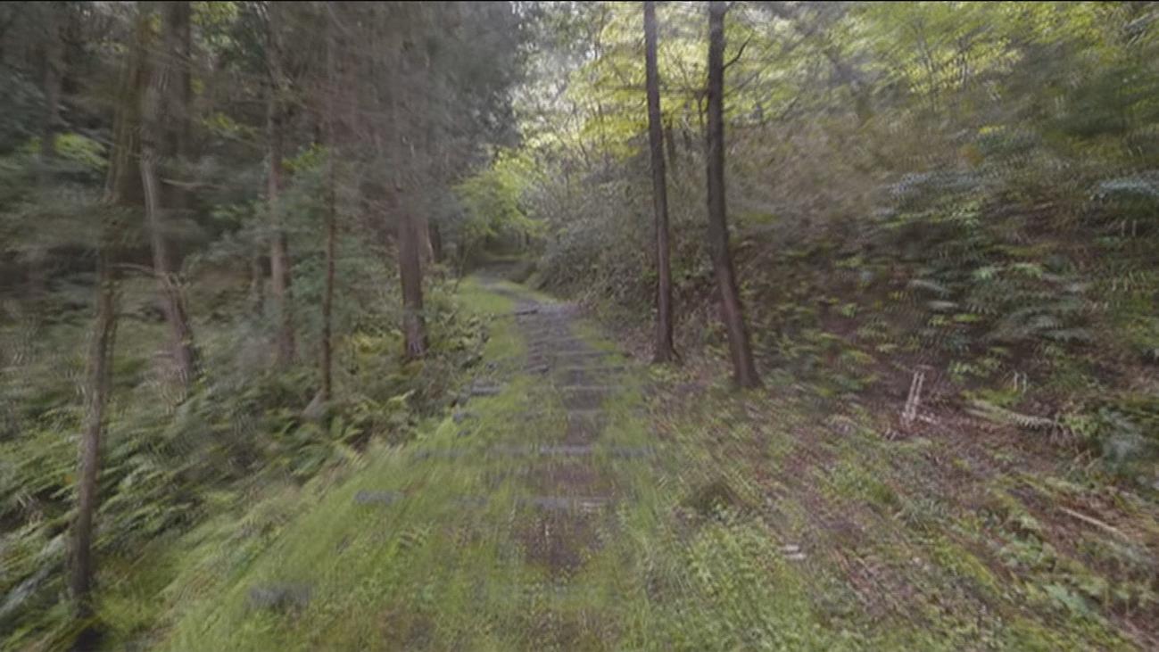 Un paseo virtual por el mundo sin salir de casa