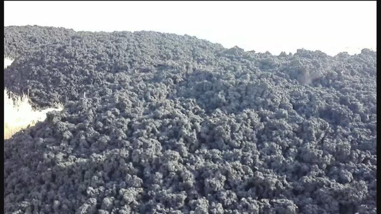 Aparece un vertido de lodo, de origen desconocido, en Pinto