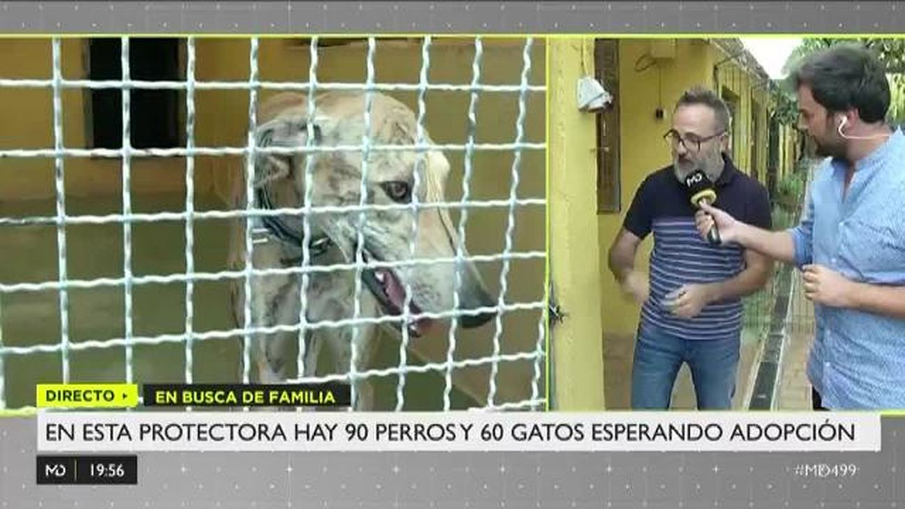 Madrid Directo 03.09.2019