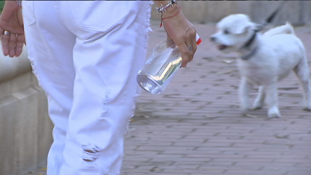 Las multas en Madrid si no limpiamos el orín de nuestras mascotas