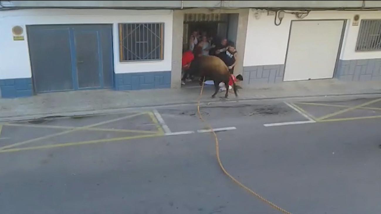 Año negro en los festejos populares con toros