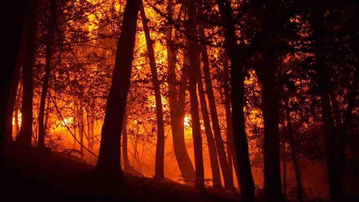 Estabilizado el incendio de A Gudiña (Ourense) tras quemar 440 hectáreas