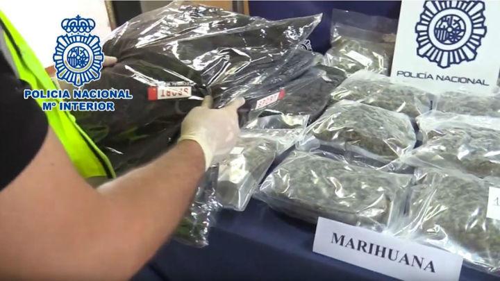 Nueve detenidos y 19 kilos de marihuana requisados en un chalé ocupado en Fresno de Torote