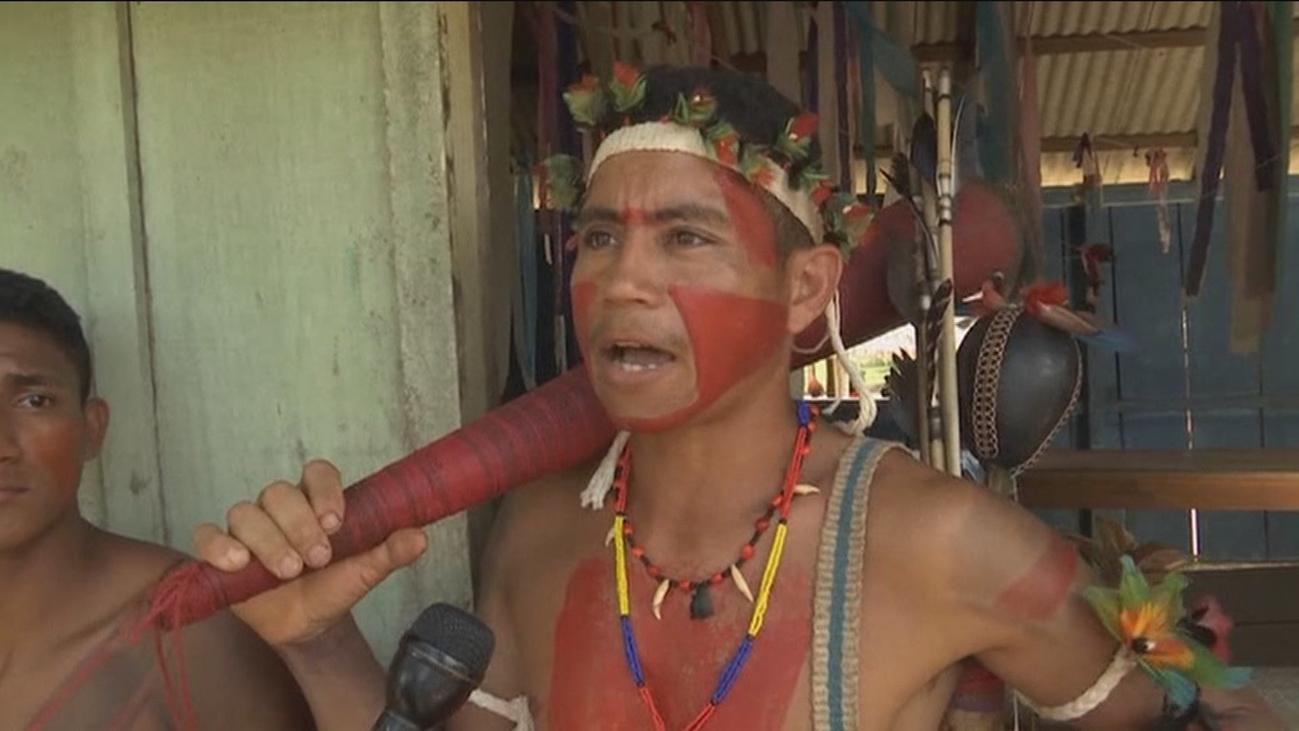 Los indígenas del Amazonas plantan cara a las mafias de la madera