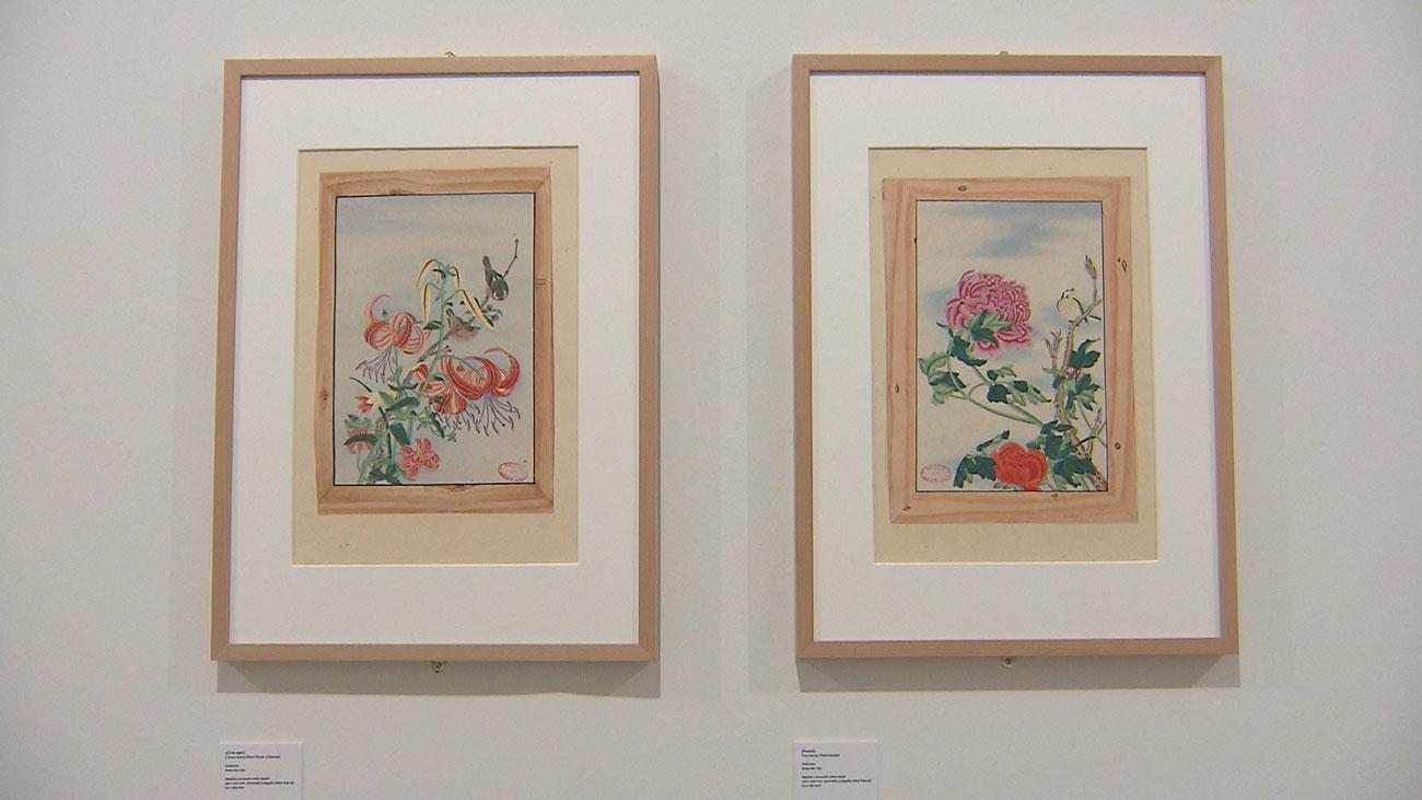 Arte y ciencia se dan la mano en la nueva exposición del Real Jardín Botánico