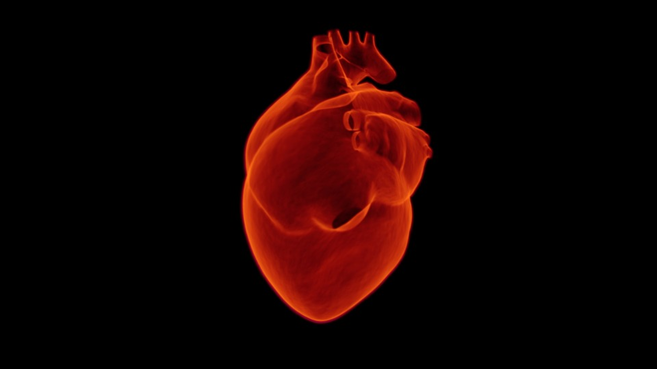 ¿Cómo cuidar nuestro corazón?