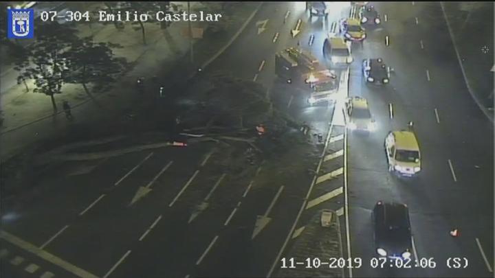 La caída de un árbol obliga a cortar  el paseo de la Castellana y provoca importantes atascos