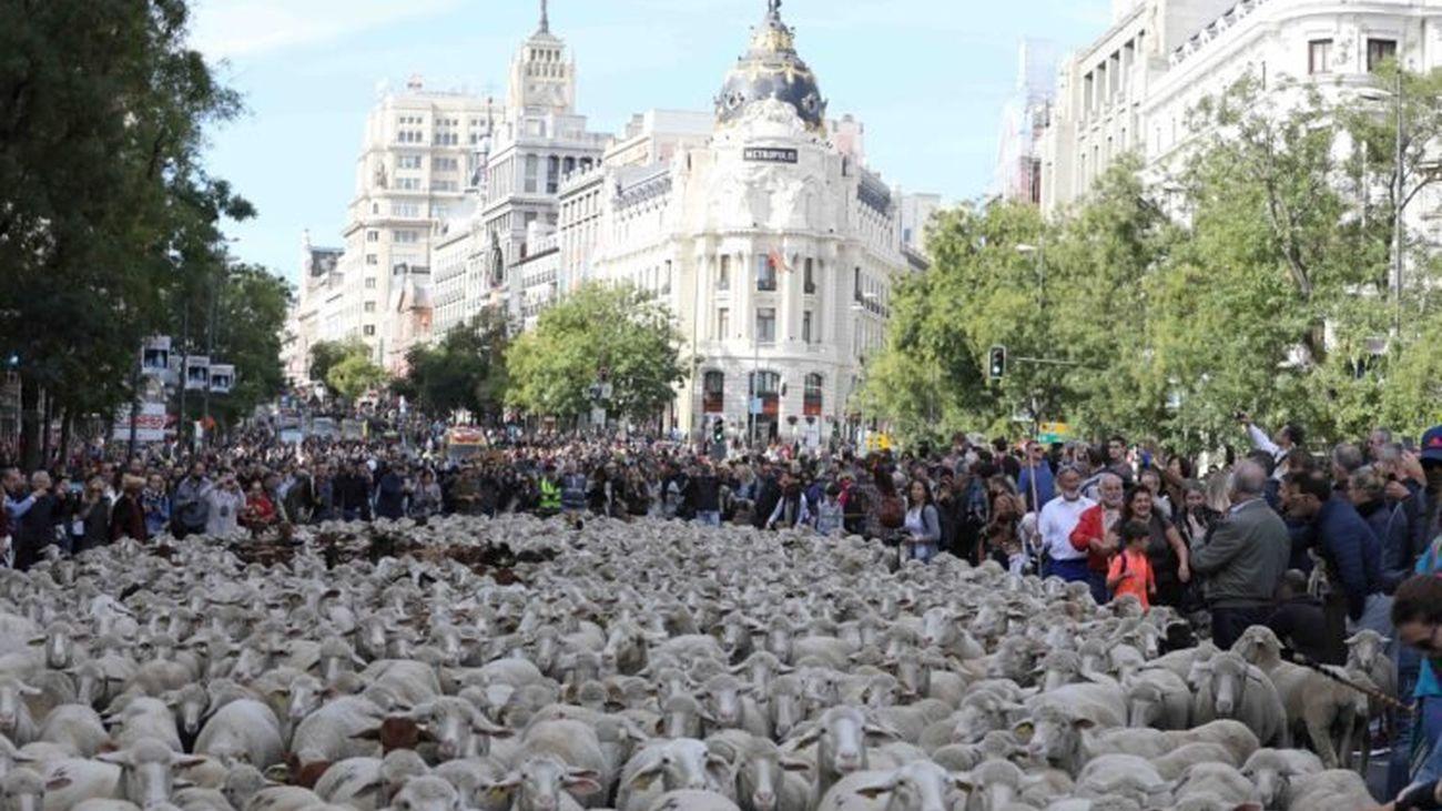 Numerosas calles de Madrid tendrán cortes de tráfico este fin de semana
