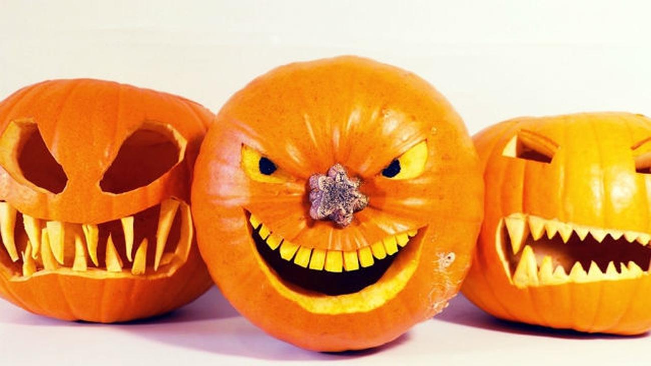 Las calabazas de Halloween vienen de Villaconejos