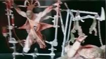El descuartizador de Valdemoro mató a Belén en el macabro y satánico escenario de su casa