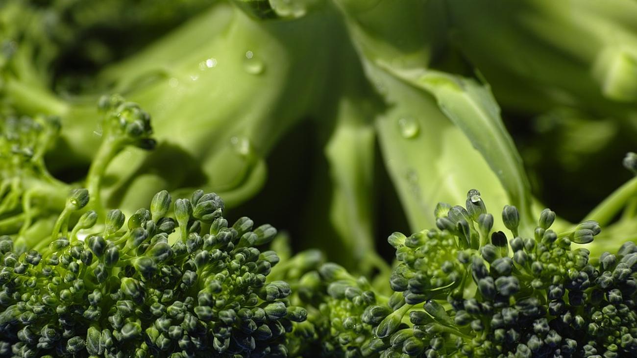 ¿Cómo llevar una dieta vegana?