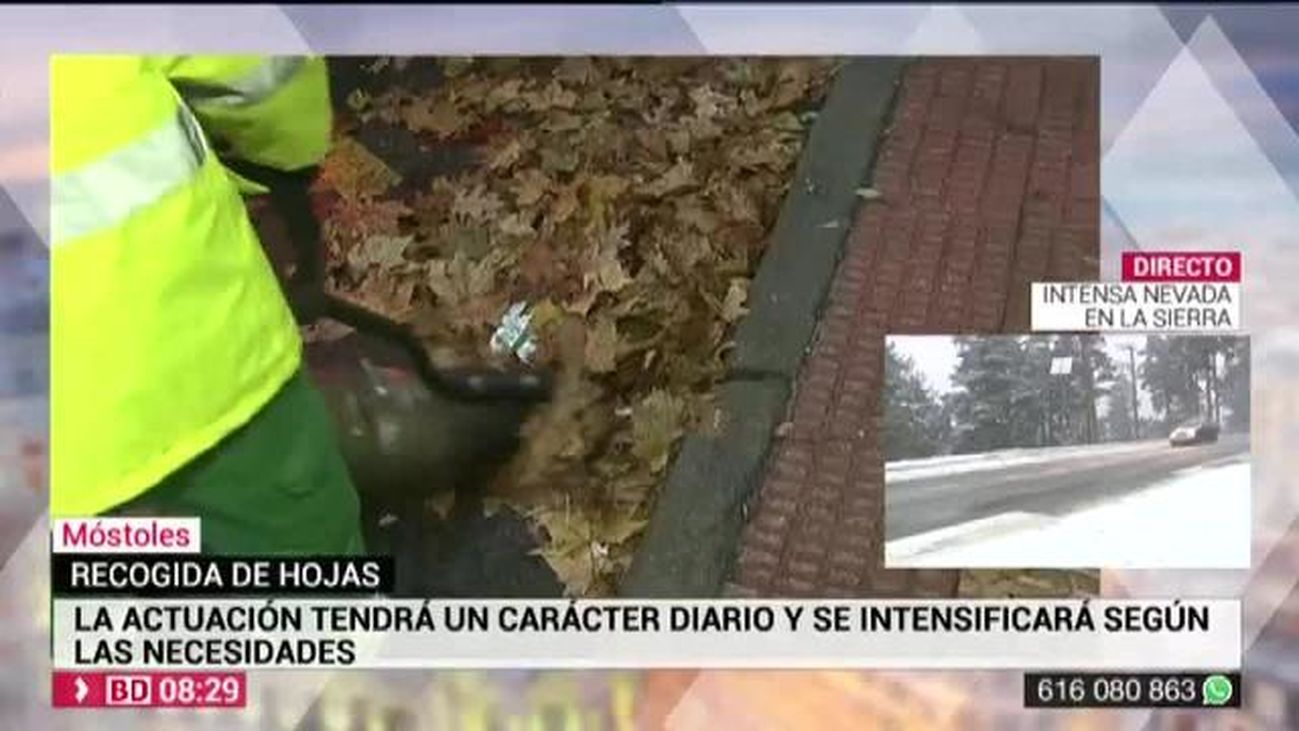 Buenos Días Madrid 14.11.2019 (8.00 - 9.00)