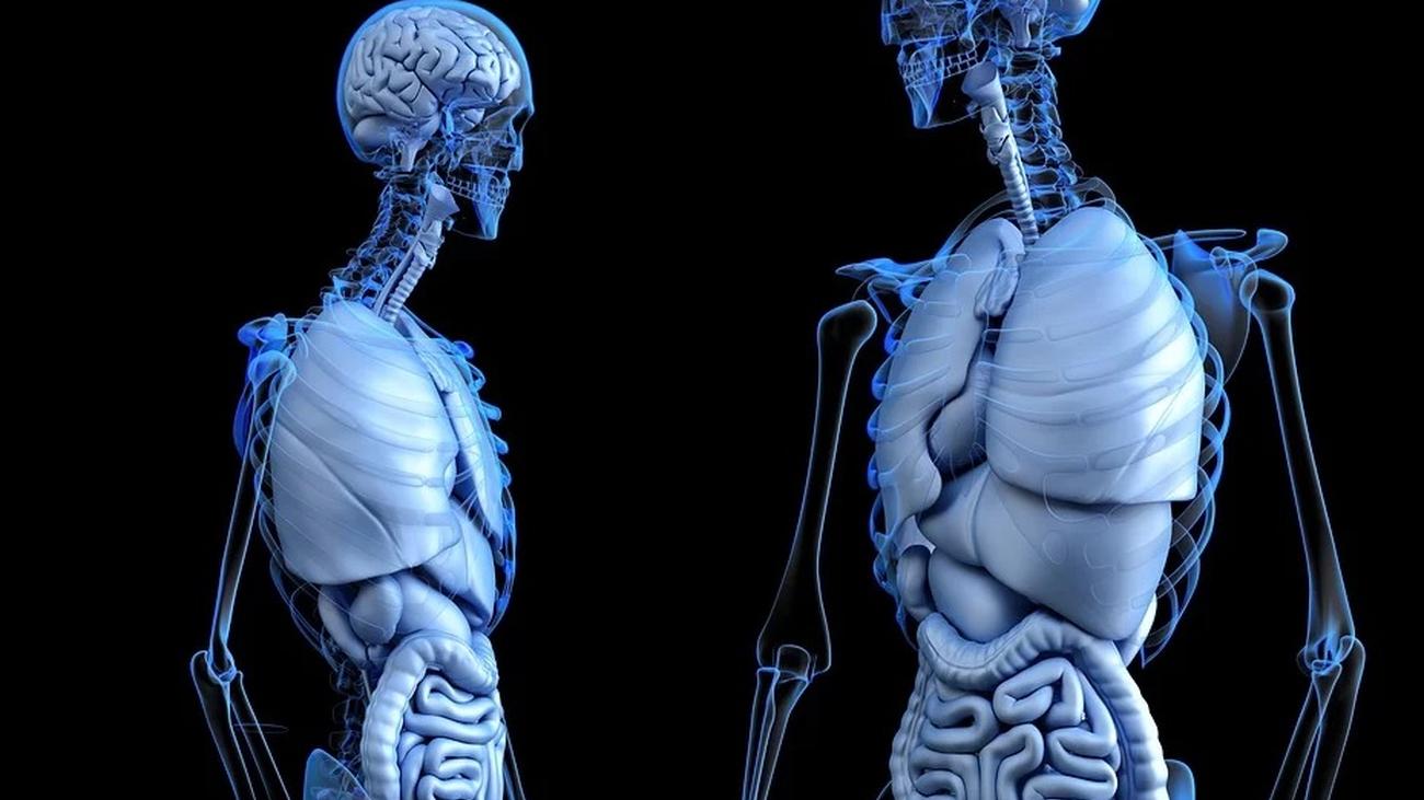 Fortalece tus huesos con estos ejercicios